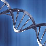 Молекулярна биология и генетика